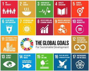 UN Sustainable Development Goals Advocate